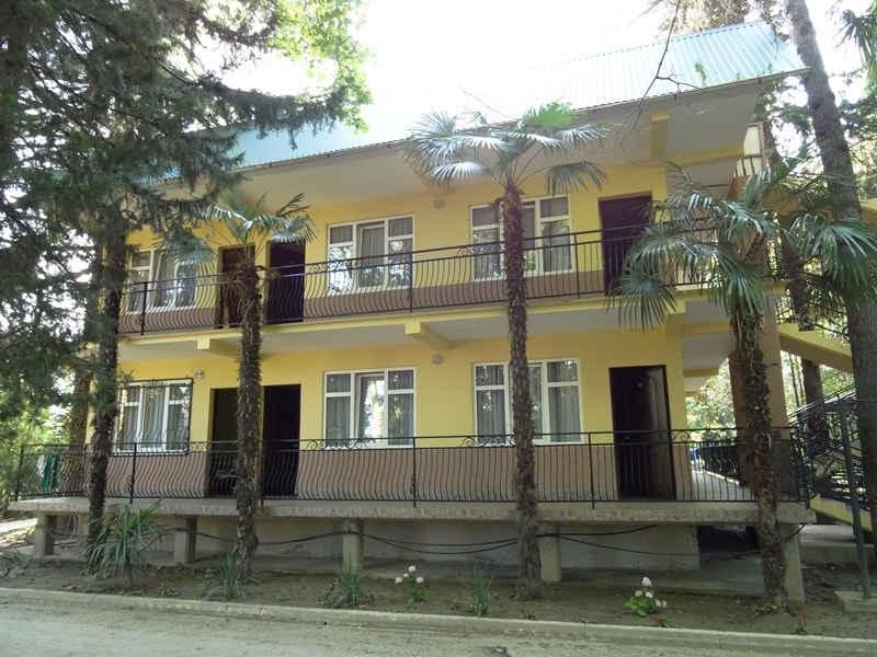 kurazh-lazarevskoe-5-minjpg